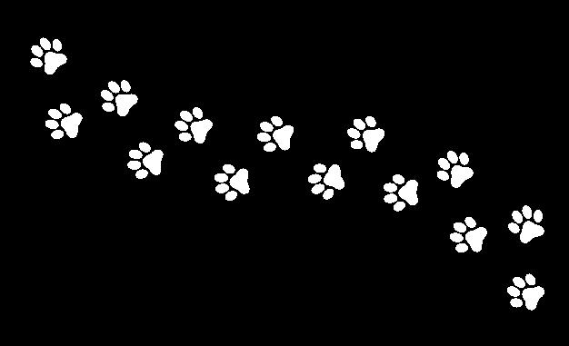 patinhas 2
